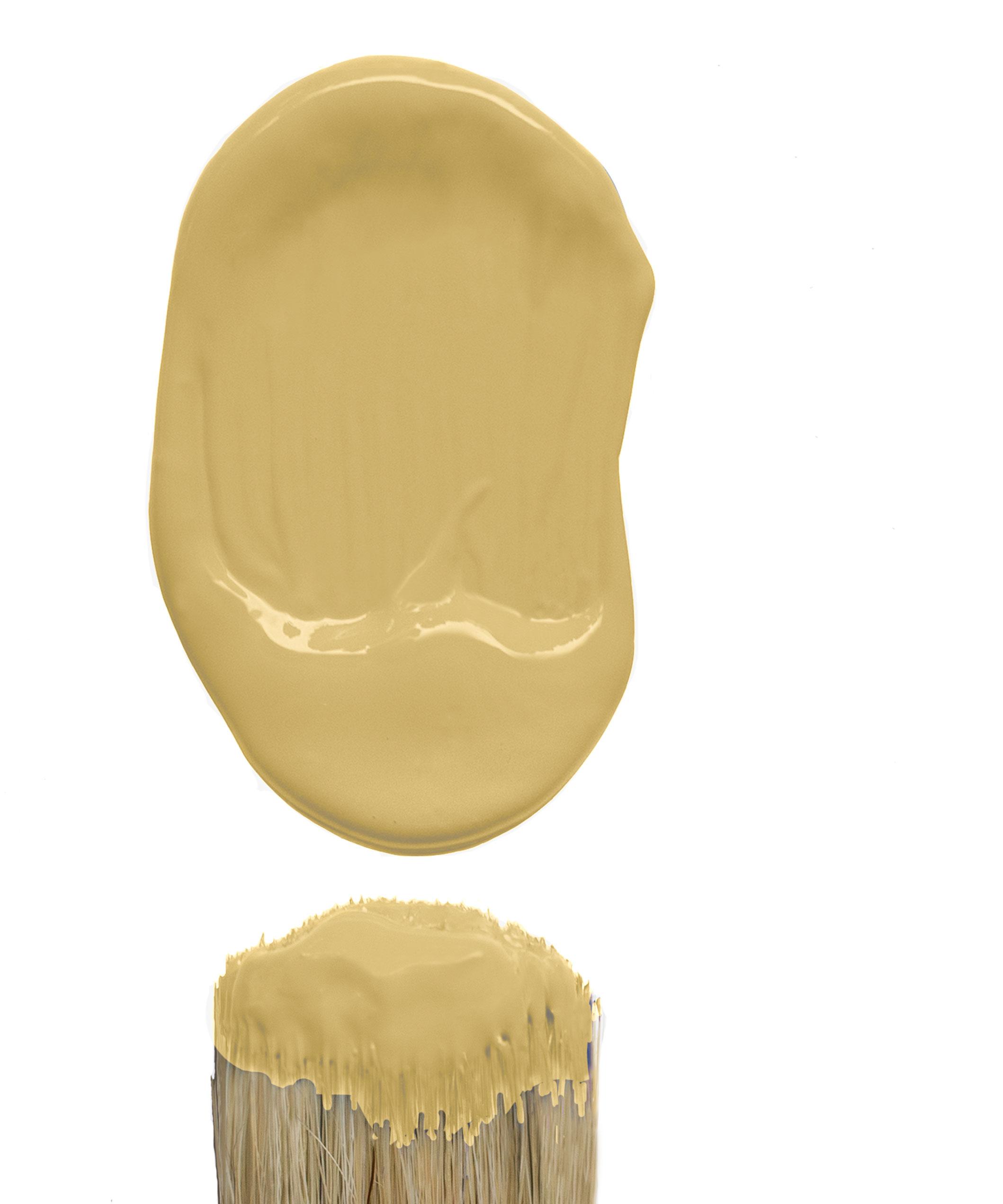 Hot-As-Mustard-2